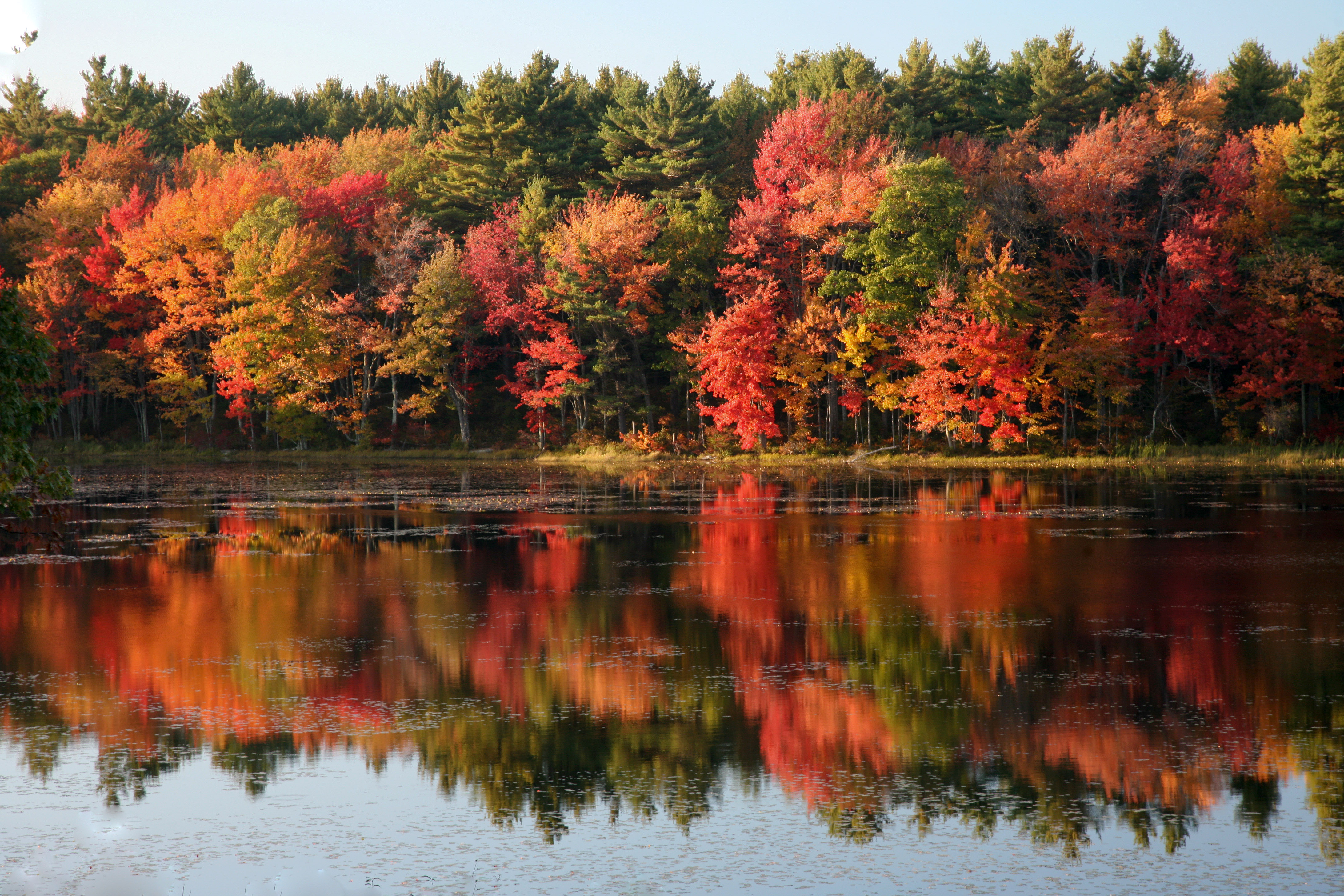 Tips for shooting fall foliage and autumn scenes - Pics of fall scenes ...
