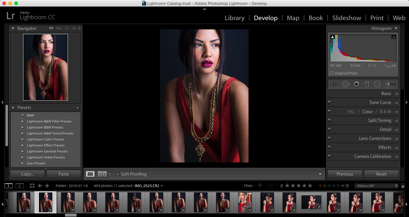 Lightroom is a powerful tool organizational tool. I took over 600 shots at this recent shoot, of which less than 20 are likely candidates to be edited and shared with the world. My beautiful model is Pilar (B&M Models).